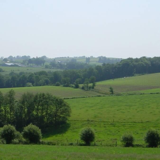 Un paysage de plaine