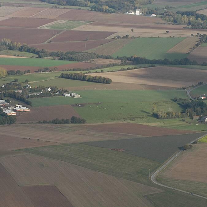 Un paysage d'openfield